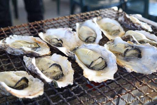 宮城県松島の旬味かきの里の新鮮牡蠣