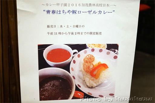 岐阜県美濃加茂市美濃加茂ツアーのお休み処やどりぎの高校カレー甲子園日本一のカレー